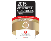 2015-twgt-stroke-gold-plus-logo.png